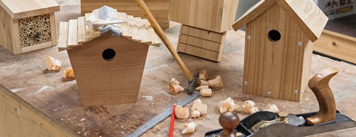 Bird, Bee & Bat Boxes